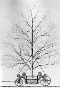 prospect_park_tree_moving_machine_1868